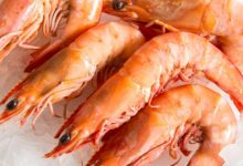 health benefits of eating prawns and its nutition facts