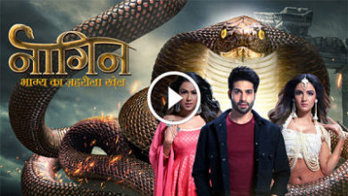 Naagin 4 Tops the TRP Chart, Bigg Boss 13 Not in the Top 10 Shows_opt
