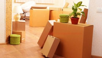 Packers Movers Chandigarh best companies