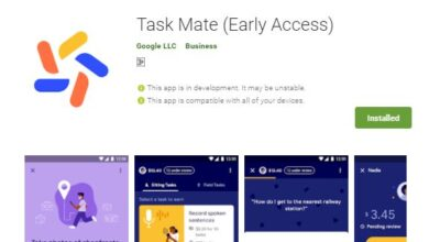 Download Google Task Mate to Earn Money Online From Home
