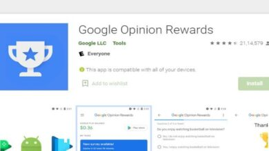 Google Opinion Rewards how to earn money Online